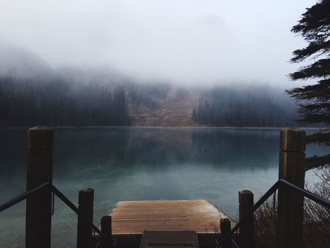 EyEmNewHere Emerald Lake British Columbia Yoho National Park Canada Fog Nature No People Outdoors Lake Beauty In Nature Wood Paneling Simple Things In Life EyeEm Nature Lover Trees The Secret Spaces Go Higher