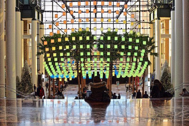 Luminaire Illuminated Indoors  Brookfield Place Brookfieldplace Mall NYC Photography Art Nikond3300 Nikon D3300 Nikon 35mm Dx 1.8
