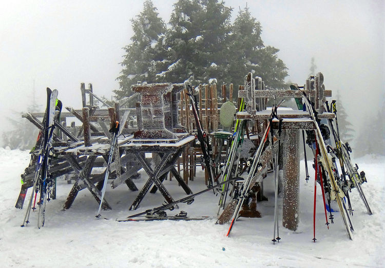 Winter sports equipment on pile Activity1 Skiing Cold Temperature Day Equipment Field Fog Frozen Food Large Group Of Objects Lot Of Objects Nature No People Ski Snow Sports Tree White Color Winter Winter Sport