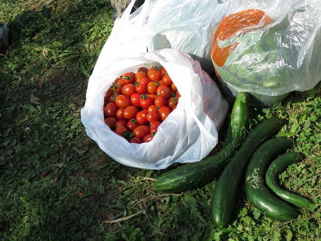 自分で作った野菜は不恰好だけど、美味しいです。 Cucumber Tomato Tomatoes きゅうり トマト 野菜