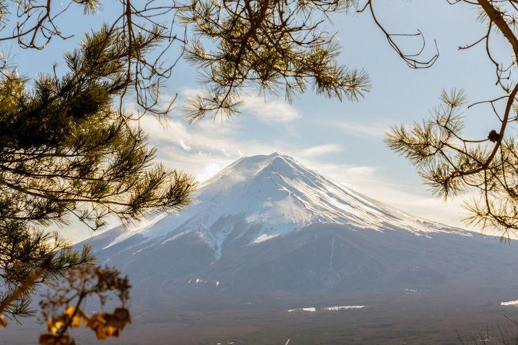 Mount Fuji With