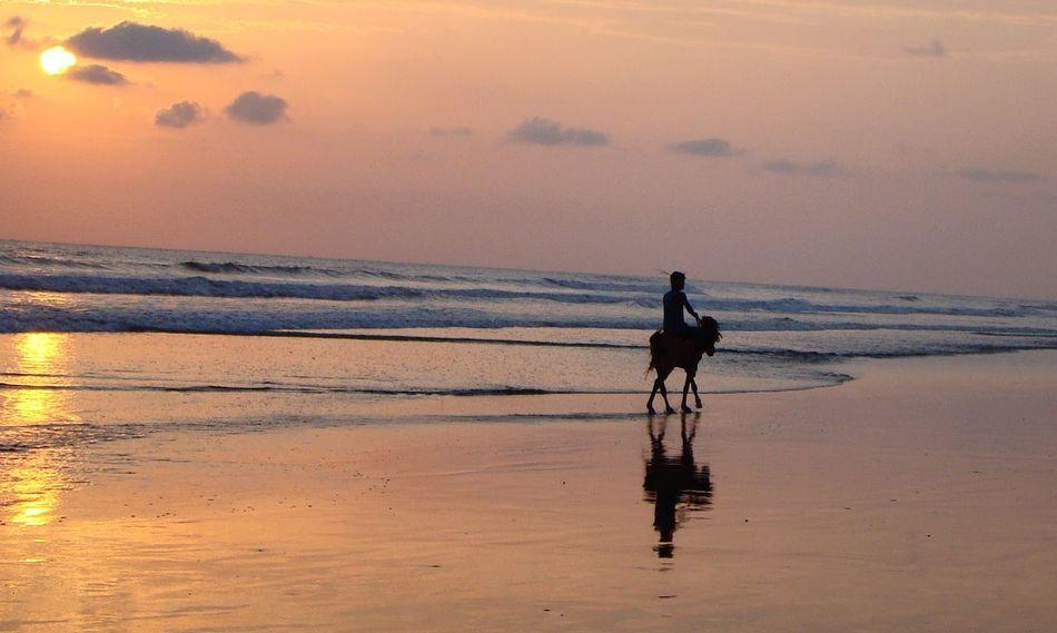 Sunset Sea Life Seabeach Seawaves Horse Riding Feel The Journey Original Experiences Cox's Bazar Bangladesh