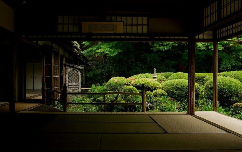 詩仙堂 Hello World Relaxing Green Enjoying Life Temple Taking Photos Japan EyeEm Best Shots Traveling