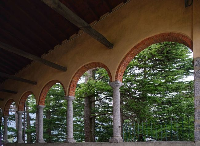 Arch Architecture Travel Destinations No People Day Architectural Column Tree Vacations Forest Sony A7RII Zeiss 24 Distagon Zeiss 2/24 ZA Sonya7rm2 Sony Alpha 7 Lombardia, Italy Sony A7rm2 Outdoors Santuario Madonna Della Rocchetta Archi Madonna Rocchetta Bosco