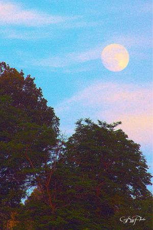 Luna Moon Sky Clouds And Sky Blue Sky
