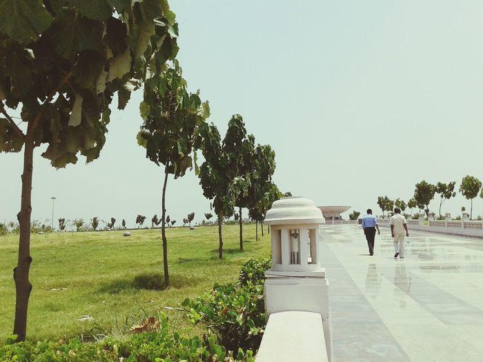Garden Grand Popplartree Pinkstone Lucknow