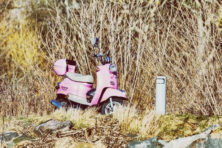 Pastel Power Check This Out Enjoying Life That's Me Mopedride Moped Fahren :D Mopedphotos Mopedtour Mopedlife Retro Retro Style # Nopeople a:9864191]