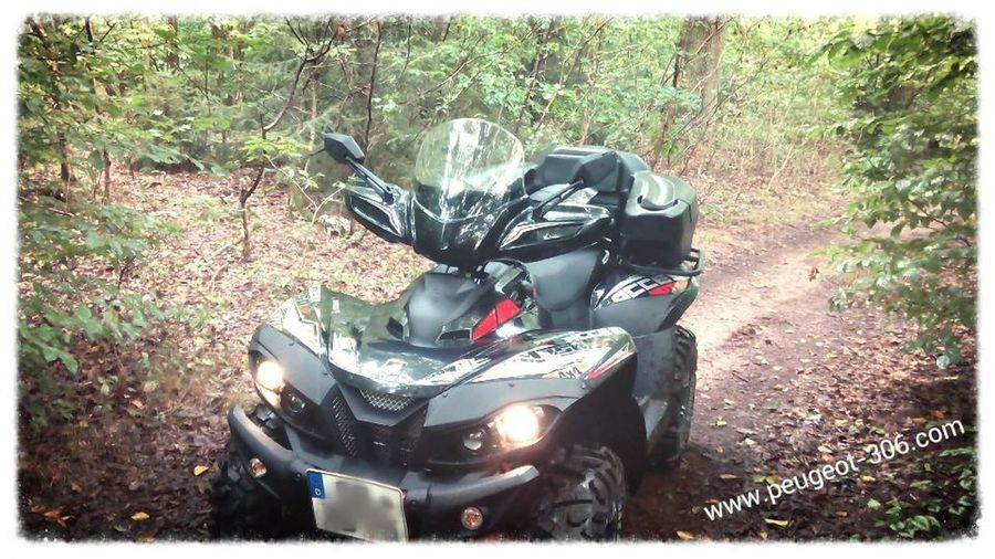 Access Amx 750 Relaxing Taking Photos Check This Out Wald Quad Access Must See