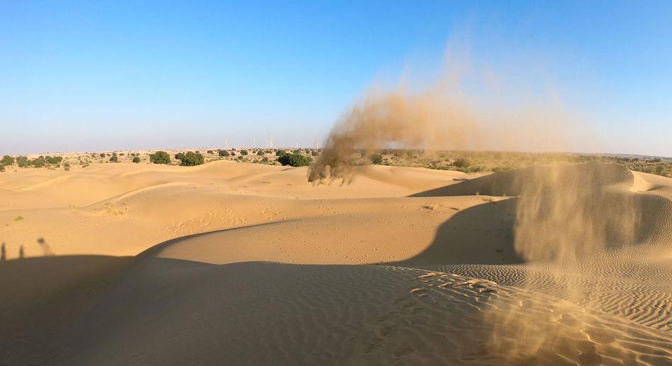 Desert India Sheepherd Travel Arid Climate Camel Clear Sky Desert Heat - Temperature Jaisalmer Landscape Nature Obrigado Outdoors Physical Geography Rajasthan Sand Sand Dune Sheep Sunset Thar Desert
