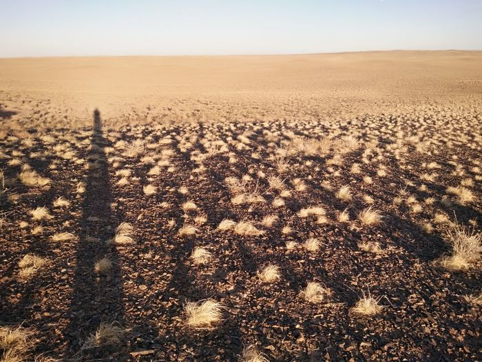 EyeEm Selects Sand Dune Desert Sand Shadow Sky Landscape Close-up