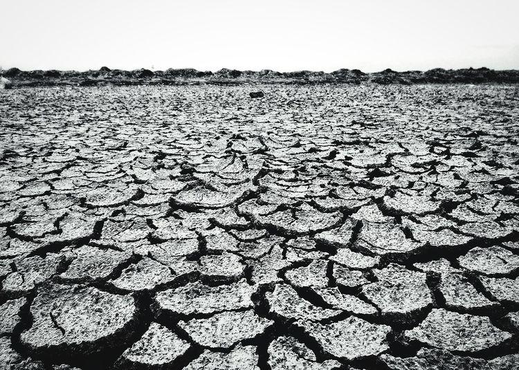 lost village, cause has flat ground Lost Village Sidoarjo Mud Disaster Lapindo Mud Flat Ground Salt - Mineral Arid Climate Cracked Sea Rural Scene