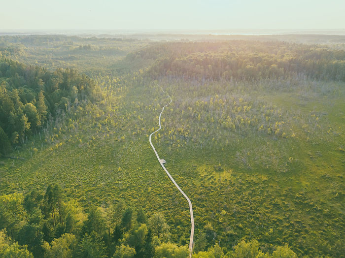 Swamp, drone aerial view. Kaunas county, Lithuania DJI Mavic Pro DJI X Eyeem Drone  Kaunas County Lietuva Lithuania Nature Nature Swamp Aerial Beauty In Nature Day Dubrava Environment Europe Forest Green Color Growth High Angle View Idyllic Land Landscape Lithuania Travel Mavic Mavic Pro Nature No People Non-urban Scene Outdoors Plant Scenics - Nature Sky Tranquil Scene Tranquility Tree The Great Outdoors - 2018 EyeEm Awards