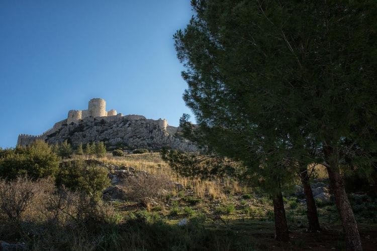 Snake Castle