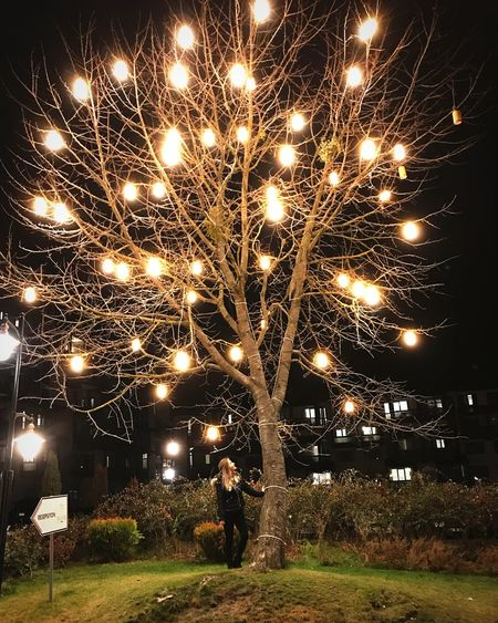 Lighttree Tree Light In The Darkness Lights Light Night Illuminated Lighting Equipment Celebration Outdoors Low Angle View Electricity  No People