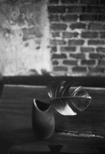 Hilight & Shadow Thailand Ilfordpan100 Still Life Monochrome Bwphotography Analog Photography