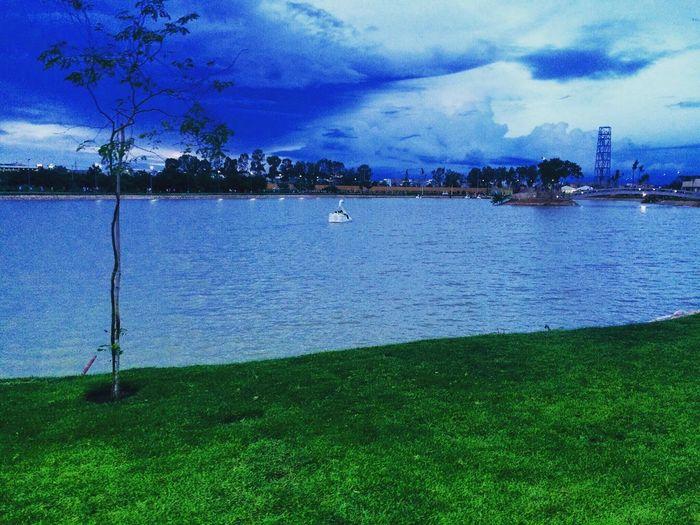 Park Lake Sky Landscape