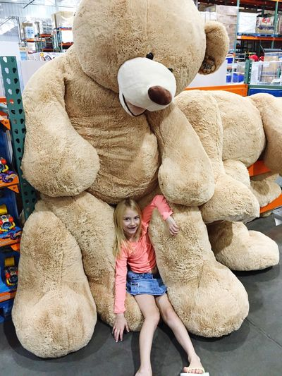Getty Premium Teddy Bear Childhood Stuffed Toy Standing Child Playing Toys Toy Huge Stuffed Animals Stuffed Animal Stuffed Stuffed Bear Holiday Present Christmas Present Indoors  Portrait Children Only Costco Sliding Down Giant Bear Giant Stuffed Animal Selected For Premium Selected For Premium.