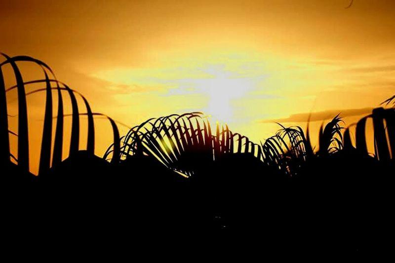 Sunrise TheBeginning Mexico Inlove Followthesun