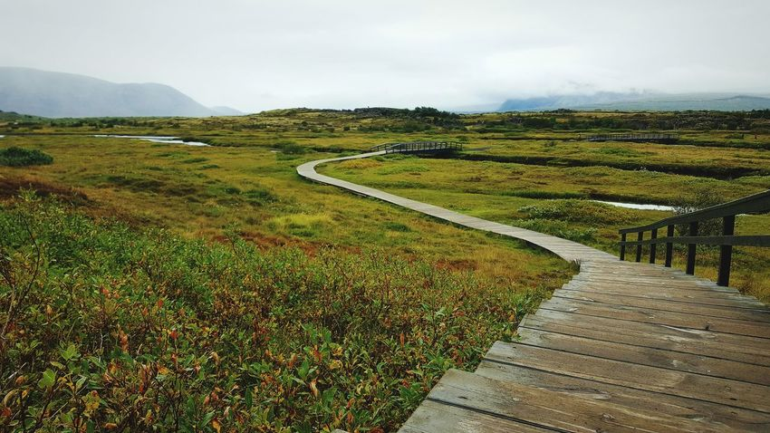 Pingvellir National Park Iceland Unesco tranquil scene Tranquility Grass Landscape Scenics Footpath Green Color Beauty In Nature Travel Destinations The Way Forward Field Nature Narrow Tourism Sky Growth Non-urban Scene Day Walkway Pathway