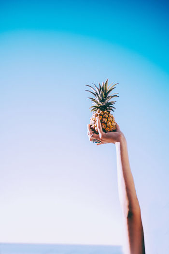 Blue Clear Sky Food Fresh Fruit Hand Healthy Lifestyle Human Hand Pineapple Sky Summer Summertime Summervibes Sommergefühle Sommergefühle