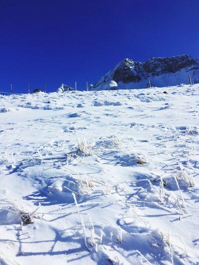 Skitouring Beautiful Day Nature Alps