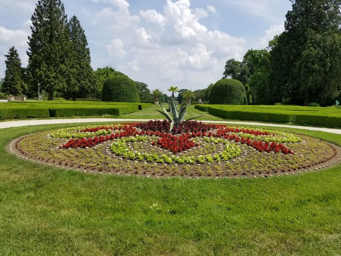 A flowerbed in the garden at the UNESCO World Heritage site of Lednice Castle. Czech It Out Trees Red Blue Sky Design Park Europe Czech Republic UNESCO World Heritage Site Lednice Flowers Plants Lawn Grass Circle Center Middle Artistic Clouds Flower Flowerbed Topiary Cloud - Sky Green Color Formal Garden Ornamental Garden Horticulture Garden Path The Traveler - 2018 EyeEm Awards