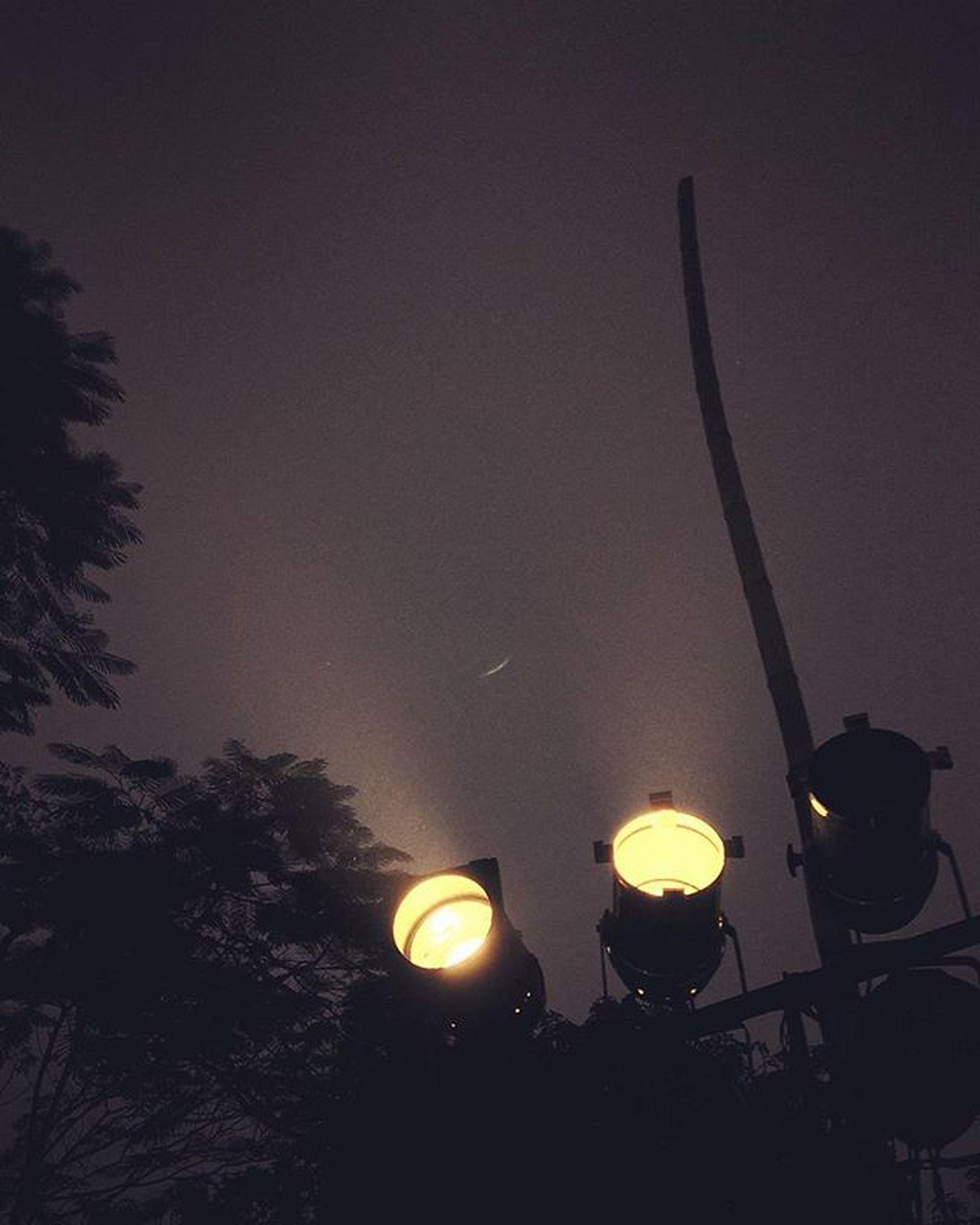 illuminated, lighting equipment, night, tree, glowing, street light, decoration, hanging, low angle view, silhouette, lantern, lit, light - natural phenomenon, electric lamp, flame, dusk, electricity, burning, electric light, dark