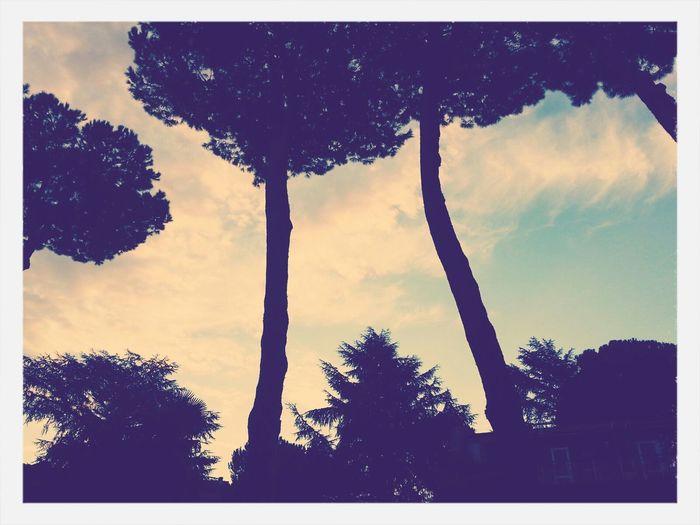 Goodmorning Morning Sky Instalife Eyeforphotography
