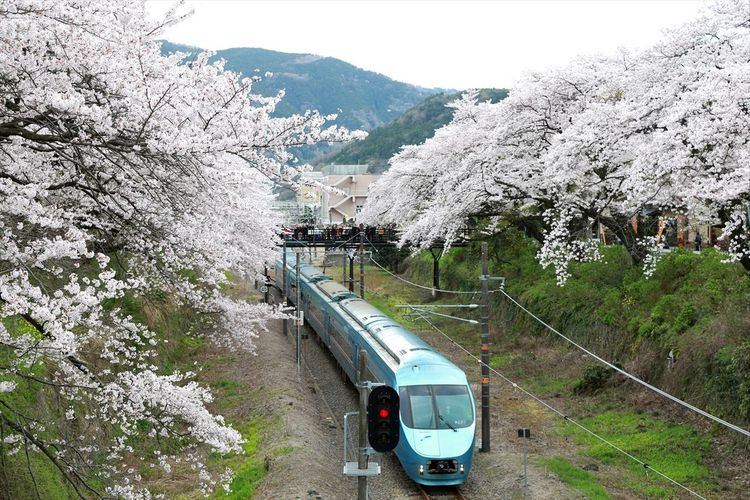 High angle view of a train in japan