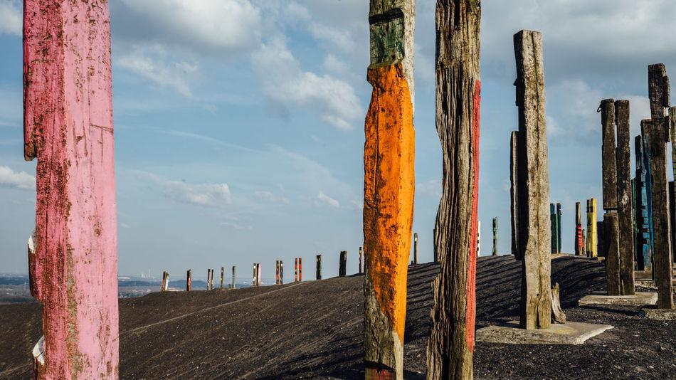 Halde Haniel Halden Art Hanielslagheap Colors Colour Ruhrgebiet Ruhrpottromantik Ruhrtourismus Ruhrarea