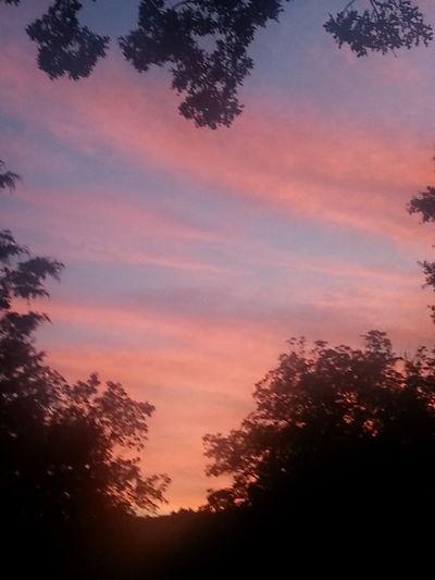 Sun Sets A