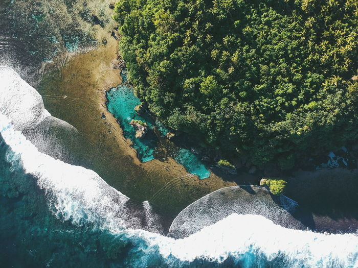 Rock and Tidal Pool Siargao Dji Drone  Aerialshot Island Philippines Beach Sea Pool Magpupungko Nature No People Tree Beauty In Nature Painted Image Close-up