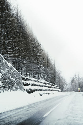 Nature Road Forest Forest Road Snow Cold Temperature Tree Winter Snowing Sky Pine Tree Deep Snow Frozen Empty Road