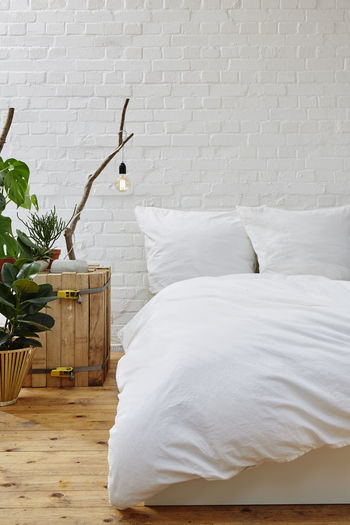 Potted plant by bed on wall at home