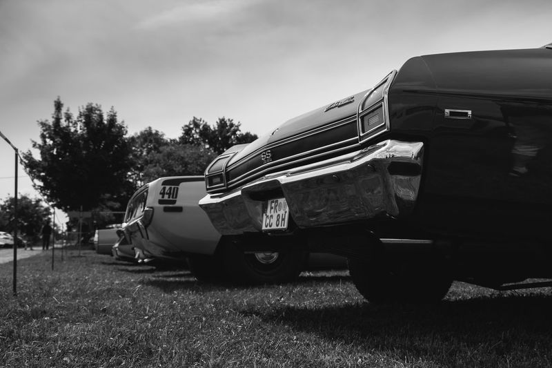Chevrolet Chevelle SS und Plymouth Cuda fotografiert auf dem Power Meet Schwanau Chevelle Chevrolet Chevelle US Cars Blackandwhite Car Chevrolet Day Land Vehicle Mode Of Transport Nature No People Old Car Oldtimer Sky Transportation Tree Vintage Vintage Cars