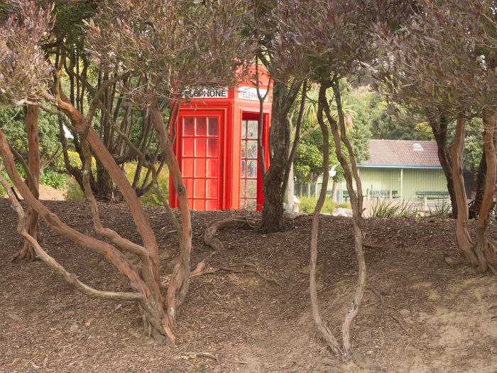 Red telephone booth by trees on field
