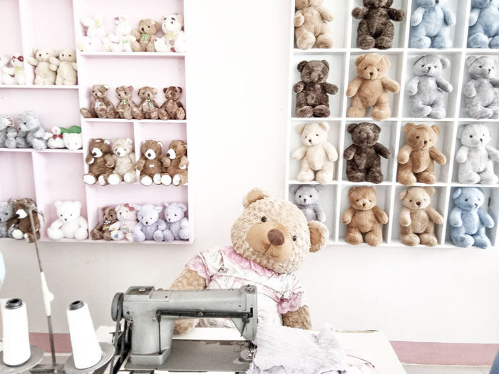 Teddy Bears On Shelves For Sale In Store