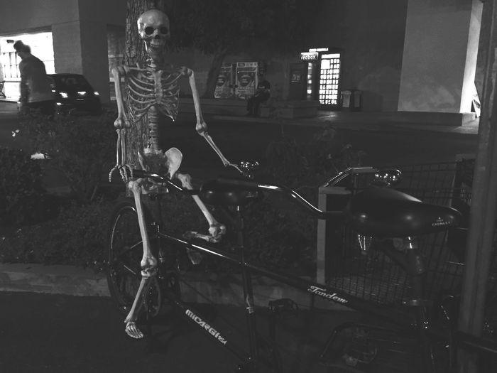 Skeleton Happy