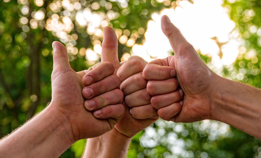 Cropped hands of people gesturing thumbs up against trees