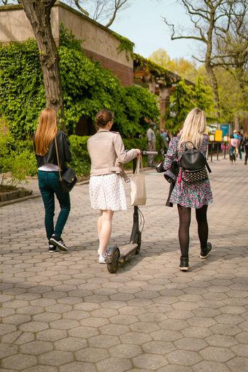 Rear view of women walking on zebra crossing in city