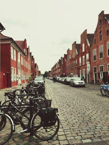Holländischesviertel Klein Amsterdam Sightseeing House Bycicle Beeing A Tourist