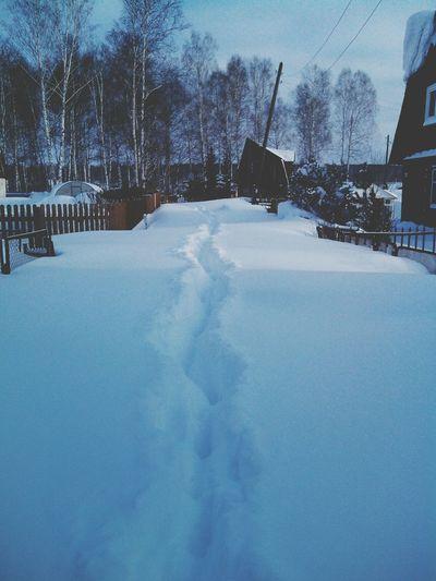 прохода нет божественная дорога дача зима 2014 Новосибирск