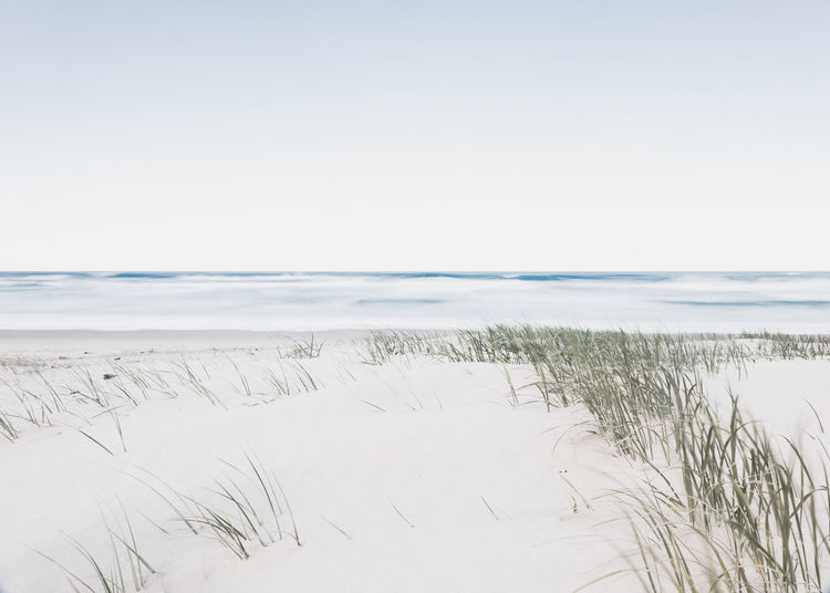 'horizon' Beach Beauty In Nature Copy Space Day Environment Grass Horizon Horizon Over Water Land Landscape Marram Grass Nature No People Outdoors Plant Sand Scenics - Nature Sea Sky Tranquil Scene Tranquility Water