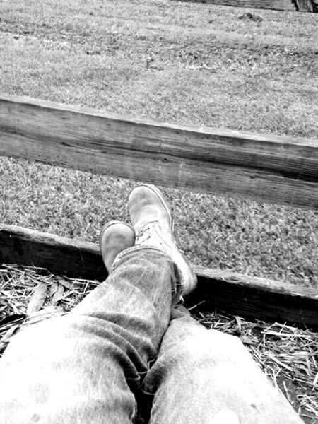 Relaxing Taking Photos Urban 4 Filter Enjoying a hayride