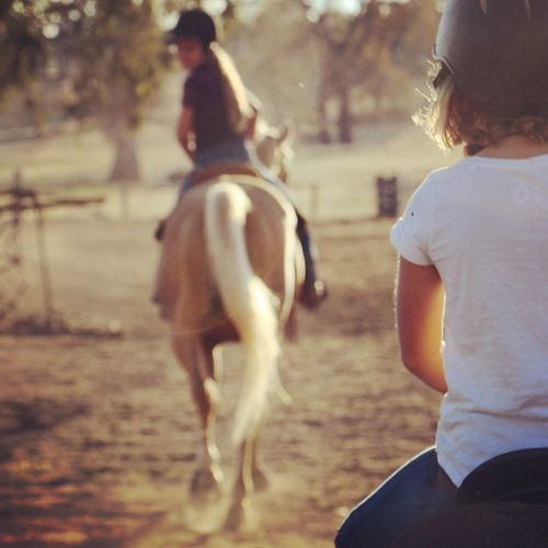 Kids on horses Nenaghpastoral Horses Mansfieldmtbuller