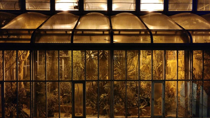 Agriculture Greenhouse Architecture No People Night Illuminated Industrial Fallout Post Apocalypse Discover Berlin