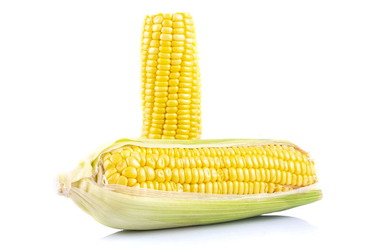 fresh raw sweet corn on the cob kernels over white background Yellow Corn Food And Drink Wellbeing White Background Vegetable Food Corn On The Cob Healthy Eating Freshness Sweetcorn Studio Shot Indoors  Close-up Still Life No People Raw Food Cut Out Corn - Crop Agriculture Vegetarian Food Snack