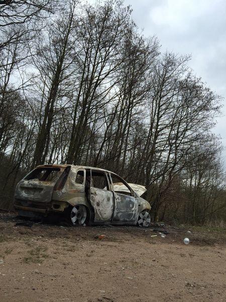 Burntout Car Woods Urban