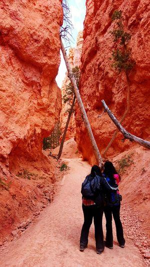 Rear view of female hikers at navajo loop at bryce canyon national park