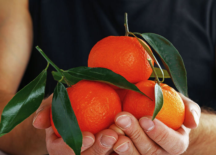 Midsection of woman holding orange fruits